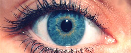Czas otworzyć oczy ….. wrażliwość sensoryczna