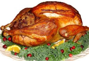 thanksgiving-turkey-white-background-667872-m